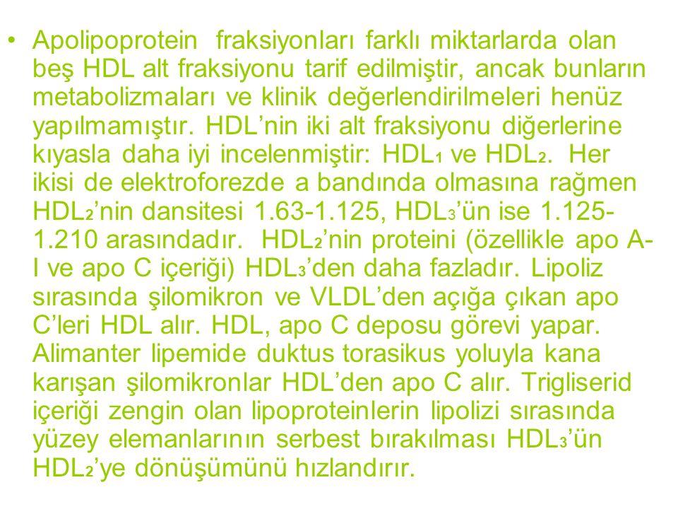Apolipoprotein fraksiyonları farklı miktarlarda olan beş HDL alt fraksiyonu tarif edilmiştir, ancak bunların metabolizmaları ve klinik değerlendirilmeleri henüz yapılmamıştır.