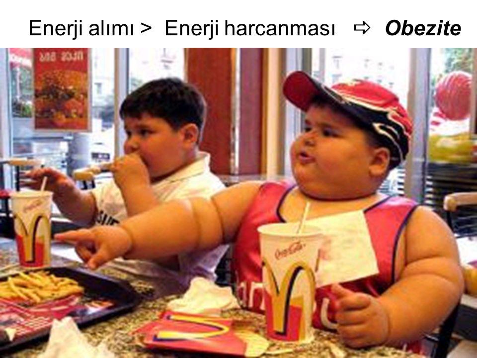 Enerji alımı > Enerji harcanması a Obezite
