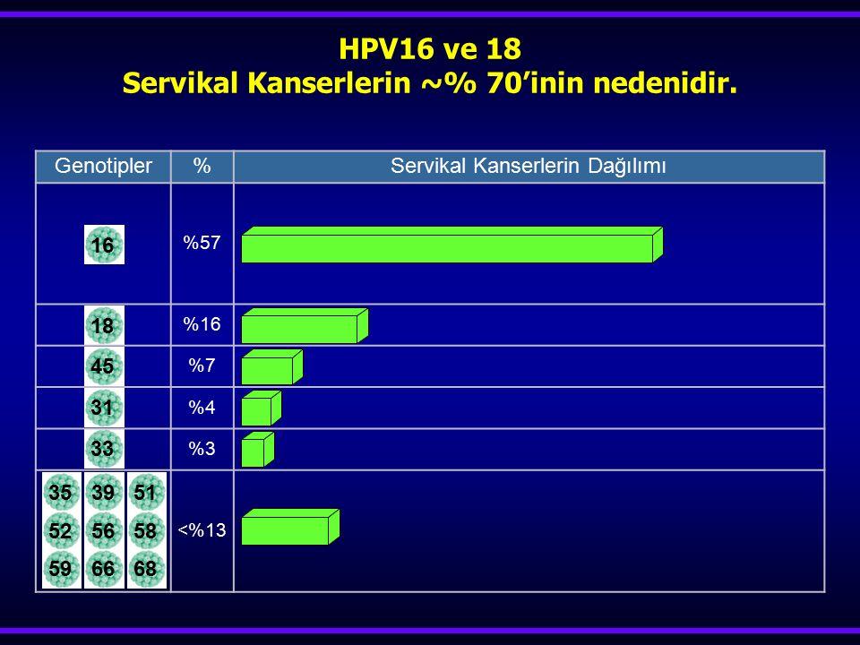 HPV16 ve 18 Servikal Kanserlerin ~% 70'inin nedenidir.