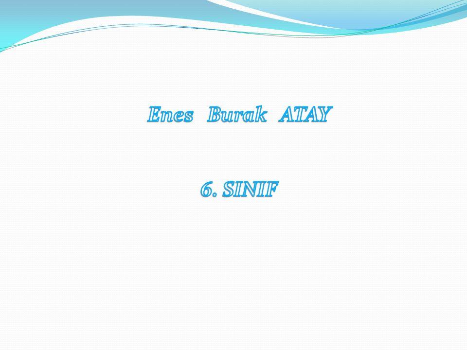 Enes Burak ATAY 6. SINIF