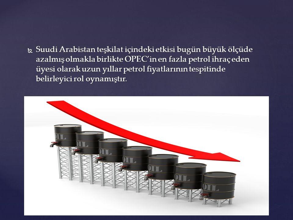 Suudi Arabistan teşkilat içindeki etkisi bugün büyük ölçüde azalmış olmakla birlikte OPEC'in en fazla petrol ihraç eden üyesi olarak uzun yıllar petrol fiyatlarının tespitinde belirleyici rol oynamıştır.