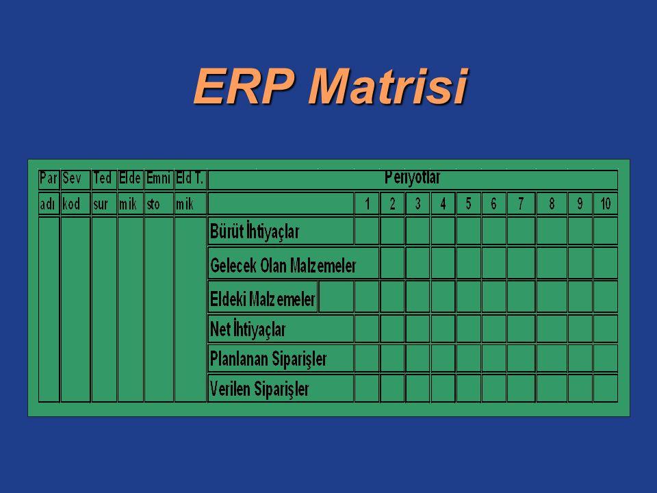 ERP Matrisi