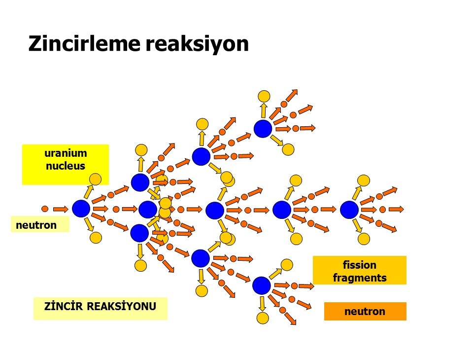 Zincirleme reaksiyon uranium nucleus fission fragments