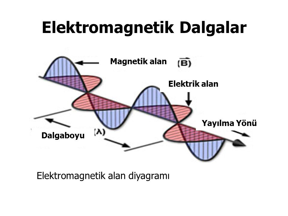 Elektromagnetik Dalgalar