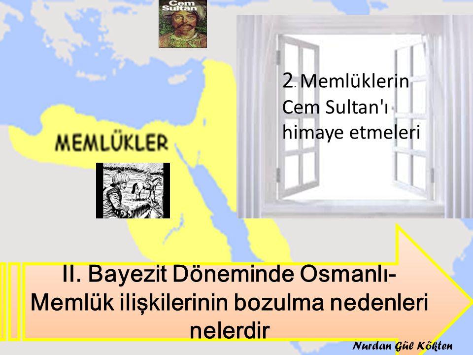 2. Memlüklerin Cem Sultan ı himaye etmeleri