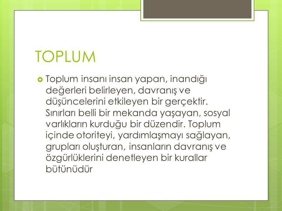 TOPLUM