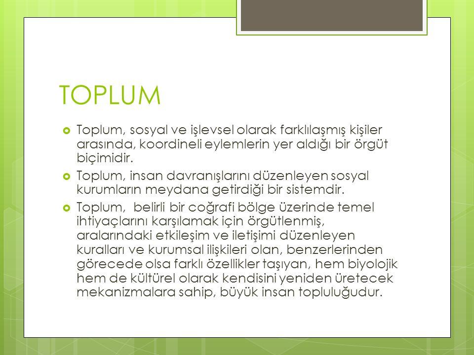 TOPLUM Toplum, sosyal ve işlevsel olarak farklılaşmış kişiler arasında, koordineli eylemlerin yer aldığı bir örgüt biçimidir.