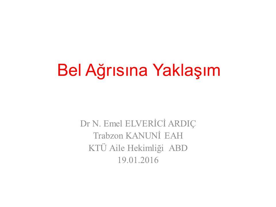 Dr N. Emel ELVERİCİ ARDIÇ