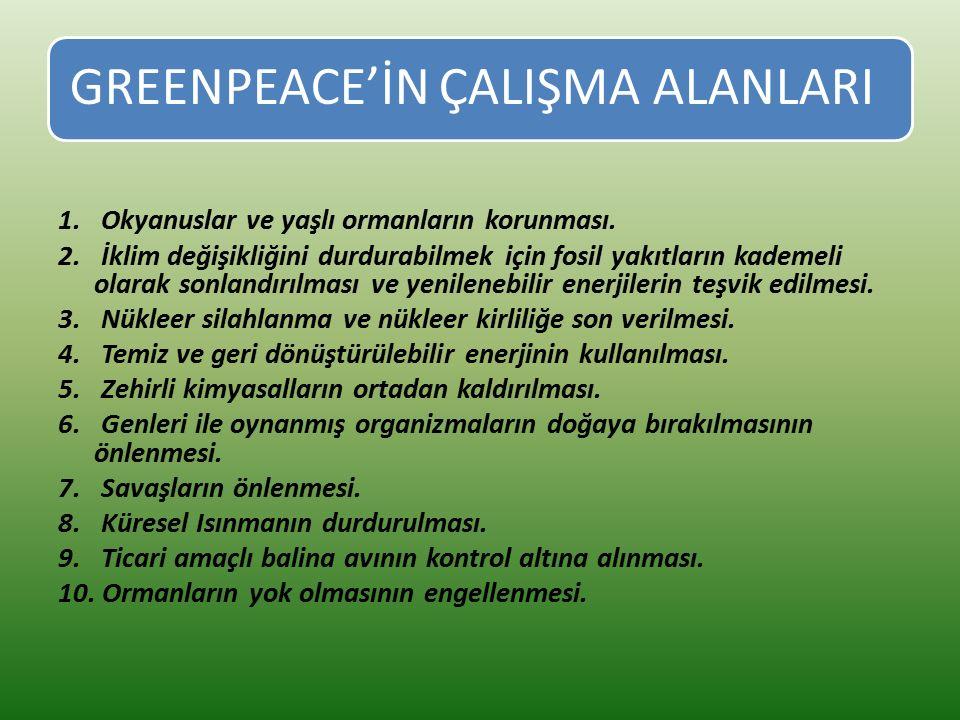 GREENPEACE'İN ÇALIŞMA ALANLARI