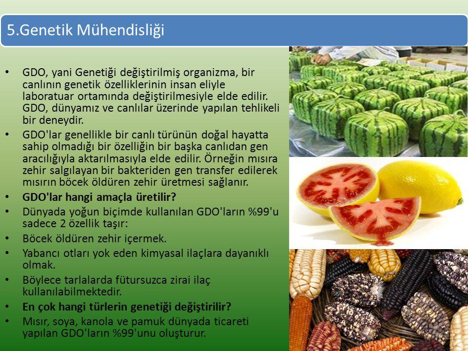 5.Genetik Mühendisliği