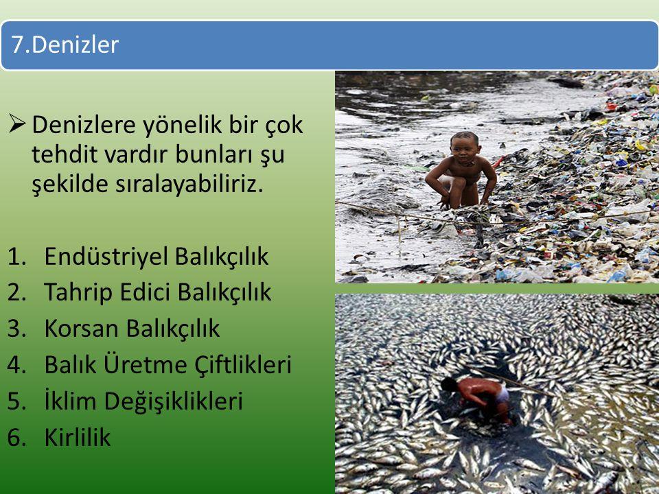 Endüstriyel Balıkçılık Tahrip Edici Balıkçılık Korsan Balıkçılık