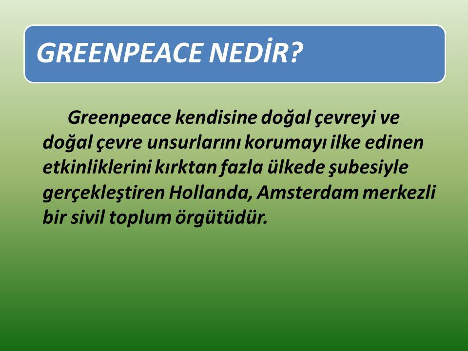 GREENPEACE NEDİR