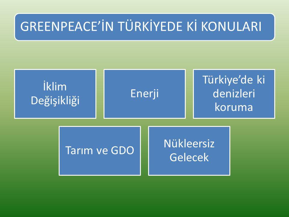Türkiye'de ki denizleri koruma