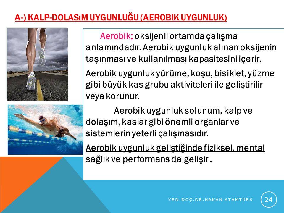 a-) Kalp-Dolasım Uygunluğu (aerobik uygunluk)
