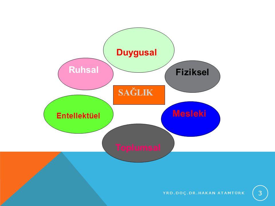 Duygusal Ruhsal Fiziksel SAĞLIK Mesleki Toplumsal Entellektüel