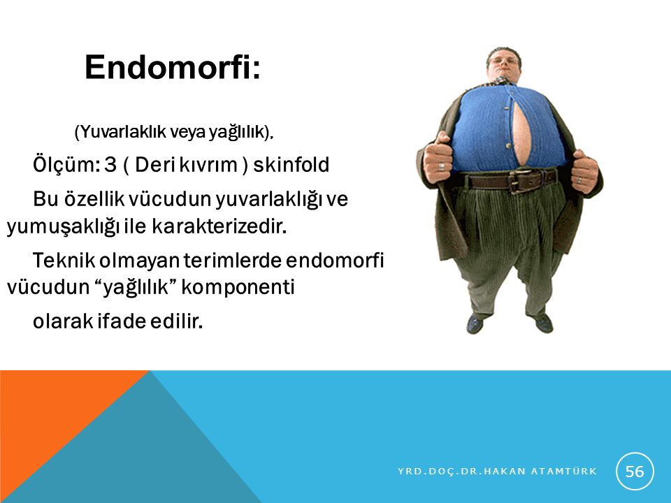 Endomorfi: (Yuvarlaklık veya yağlılık),