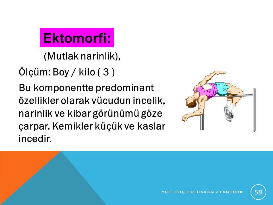 Ektomorfi: