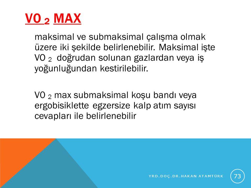 V0 2 max