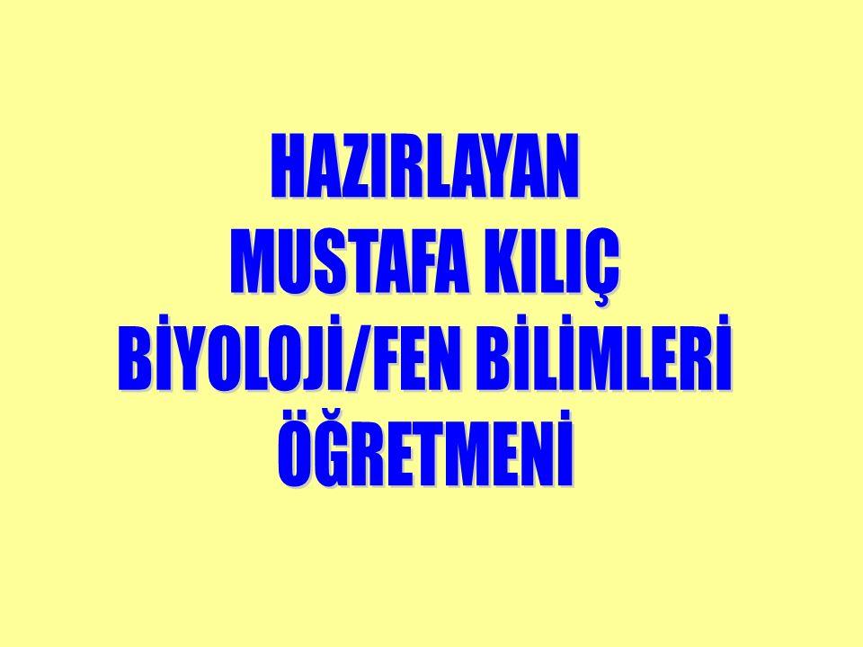 BİYOLOJİ/FEN BİLİMLERİ