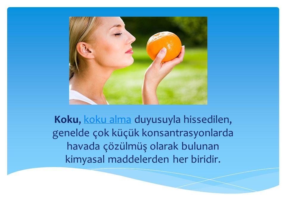 Koku, koku alma duyusuyla hissedilen, genelde çok küçük konsantrasyonlarda havada çözülmüş olarak bulunan kimyasal maddelerden her biridir.