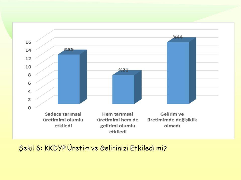 Şekil 6: KKDYP Üretim ve Gelirinizi Etkiledi mi