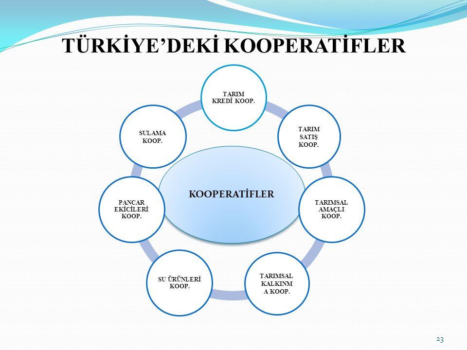 TÜRKİYE'DEKİ KOOPERATİFLER