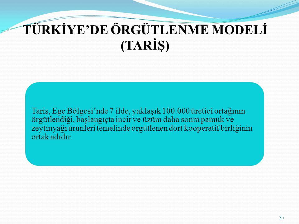 TÜRKİYE'DE ÖRGÜTLENME MODELİ (TARİŞ)