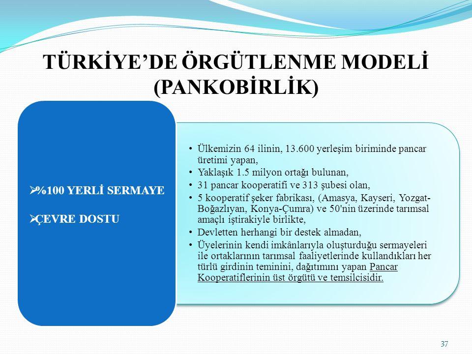 TÜRKİYE'DE ÖRGÜTLENME MODELİ (PANKOBİRLİK)