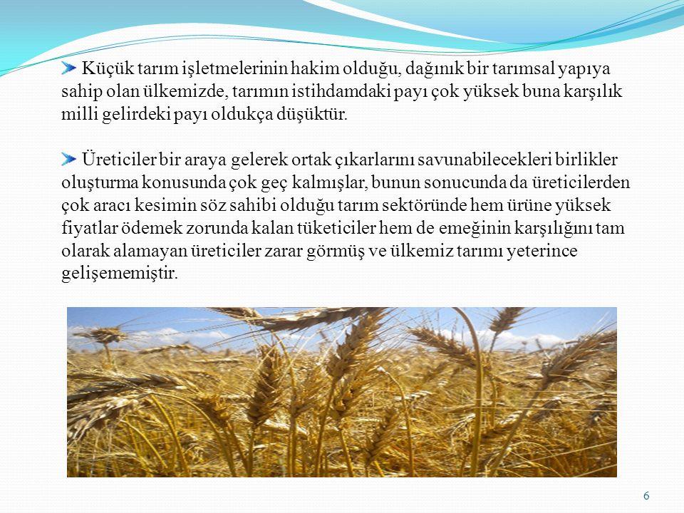 Küçük tarım işletmelerinin hakim olduğu, dağınık bir tarımsal yapıya sahip olan ülkemizde, tarımın istihdamdaki payı çok yüksek buna karşılık milli gelirdeki payı oldukça düşüktür.