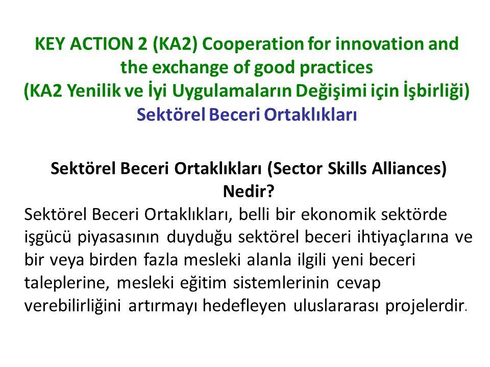Sektörel Beceri Ortaklıkları (Sector Skills Alliances) Nedir
