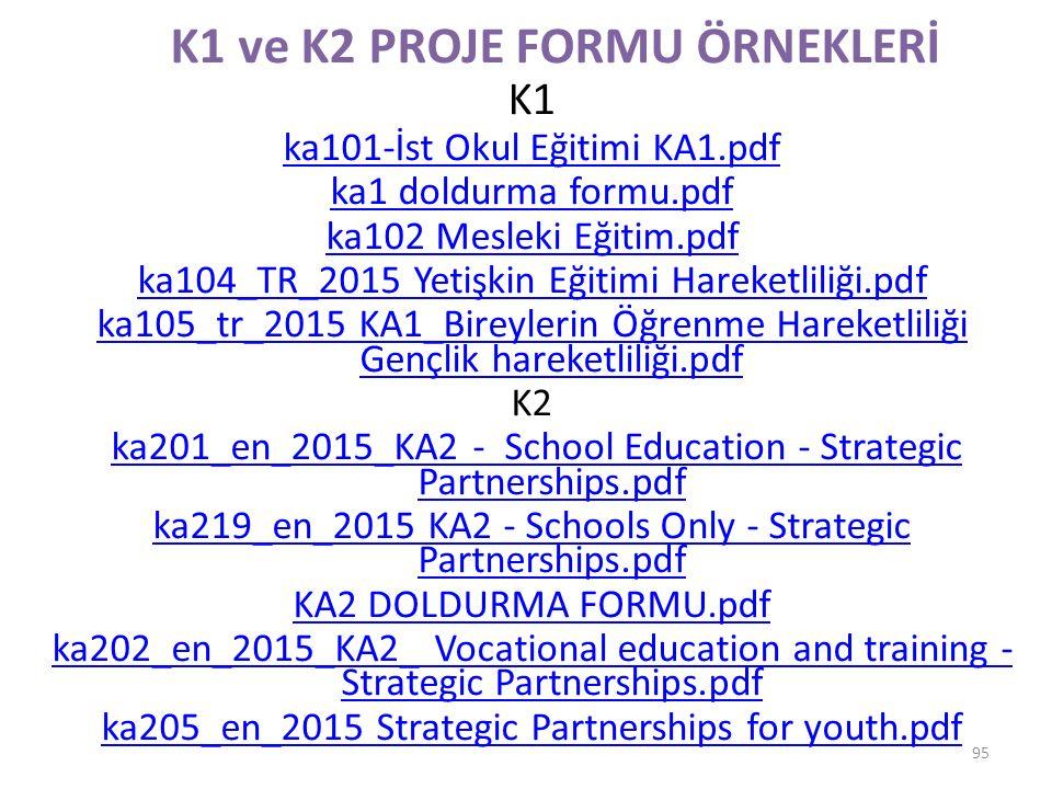 K1 ve K2 PROJE FORMU ÖRNEKLERİ