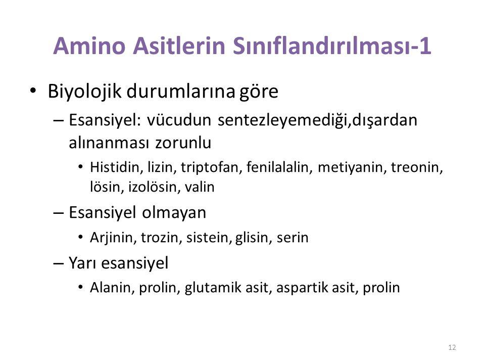 Amino Asitlerin Sınıflandırılması-1
