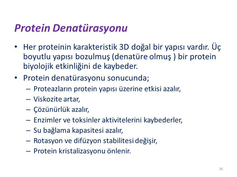 Protein Denatürasyonu