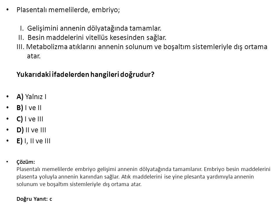 Plasentalı memelilerde, embriyo; I