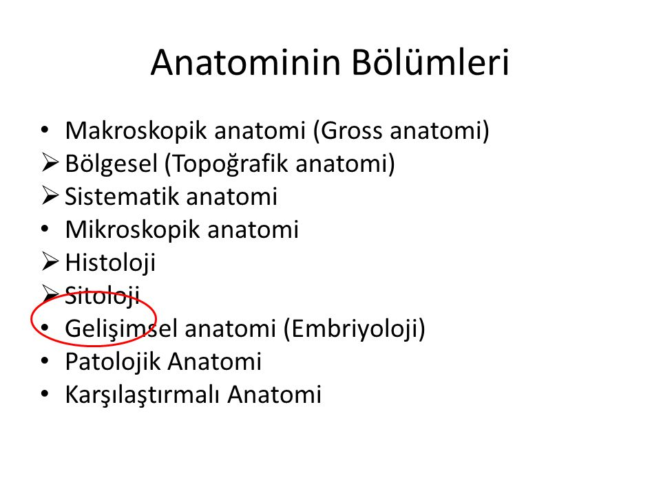 Anatominin Bölümleri Makroskopik anatomi (Gross anatomi)