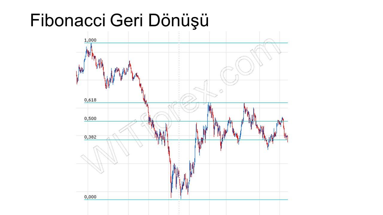 Fibonacci Geri Dönüşü