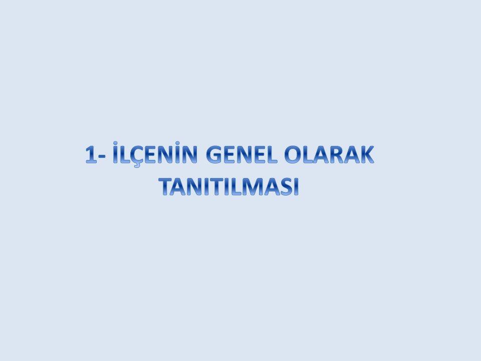 1- İLÇENİN GENEL OLARAK TANITILMASI