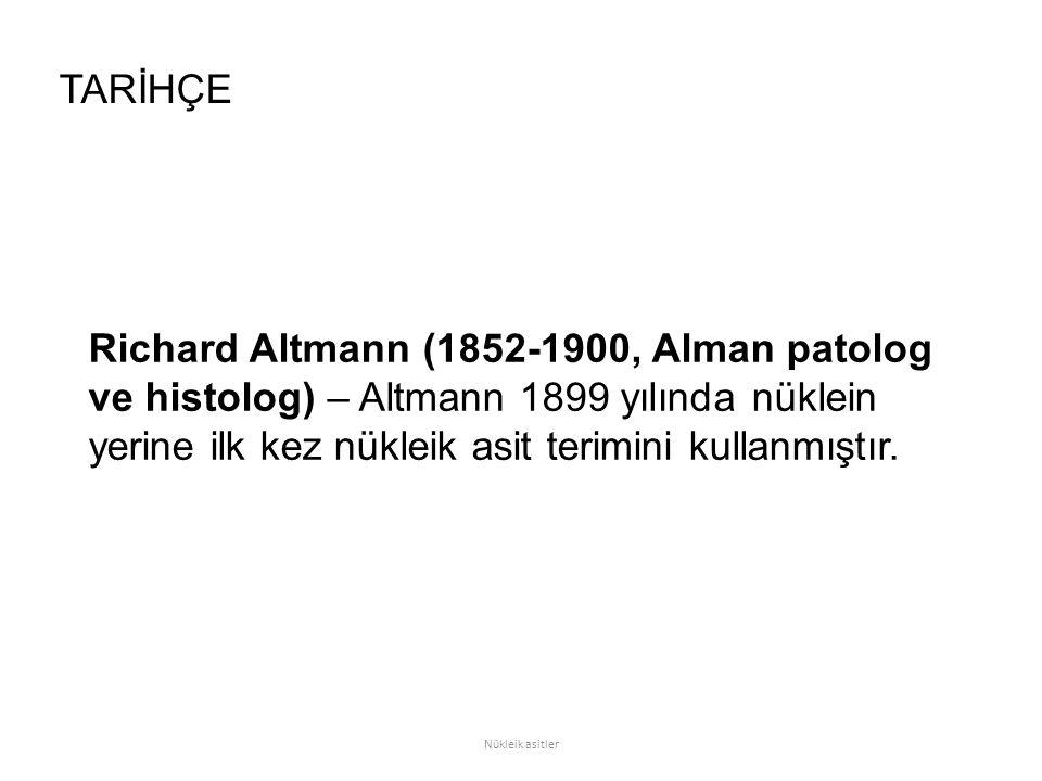 TARİHÇE Richard Altmann (1852-1900, Alman patolog ve histolog) – Altmann 1899 yılında nüklein yerine ilk kez nükleik asit terimini kullanmıştır.