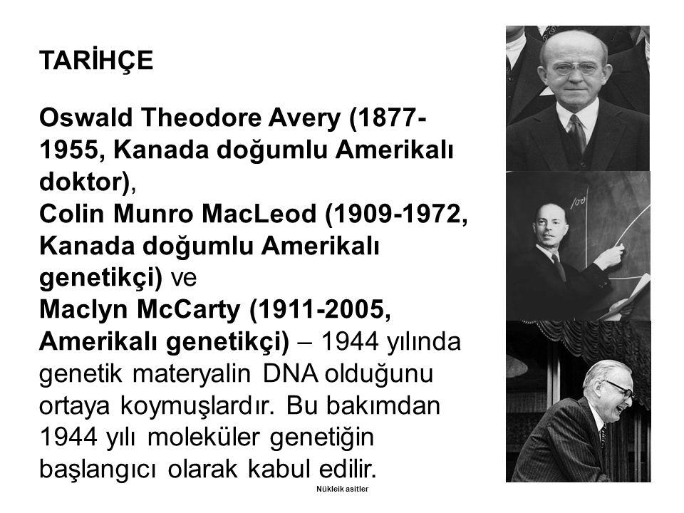 Oswald Theodore Avery (1877- 1955, Kanada doğumlu Amerikalı doktor),