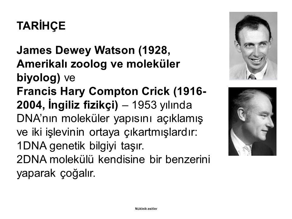 James Dewey Watson (1928, Amerikalı zoolog ve moleküler biyolog) ve