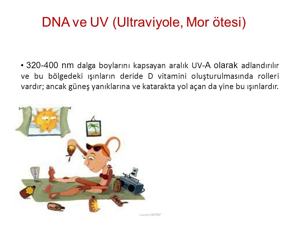 DNA ve UV (Ultraviyole, Mor ötesi)