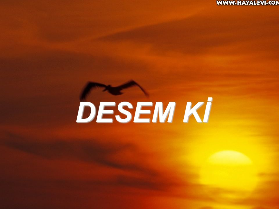 DESEM Kİ
