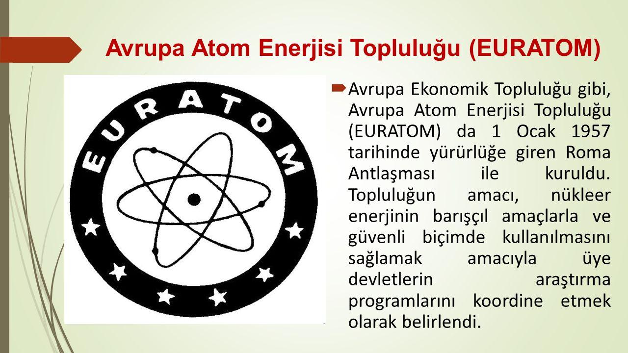 Avrupa Atom Enerjisi Topluluğu (EURATOM)