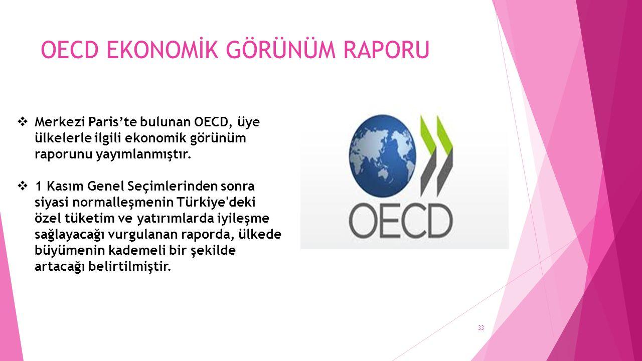 OECD EKONOMİK GÖRÜNÜM RAPORU