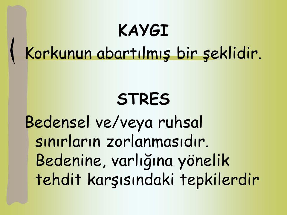 KAYGI Korkunun abartılmış bir şeklidir. STRES.