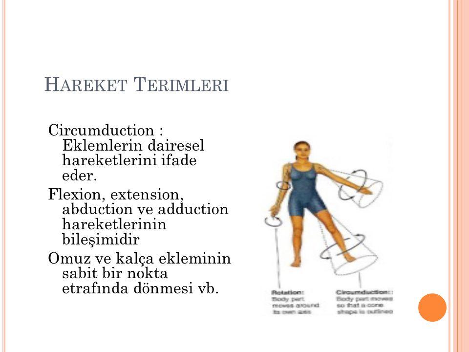 Hareket Terimleri Circumduction : Eklemlerin dairesel hareketlerini ifade eder.