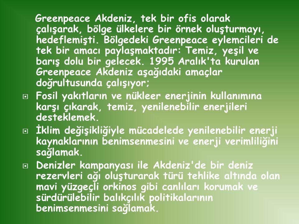 Greenpeace Akdeniz, tek bir ofis olarak çalışarak, bölge ülkelere bir örnek oluşturmayı, hedeflemişti. Bölgedeki Greenpeace eylemcileri de tek bir amacı paylaşmaktadır: Temiz, yeşil ve barış dolu bir gelecek. 1995 Aralık ta kurulan Greenpeace Akdeniz aşağıdaki amaçlar doğrultusunda çalışıyor;