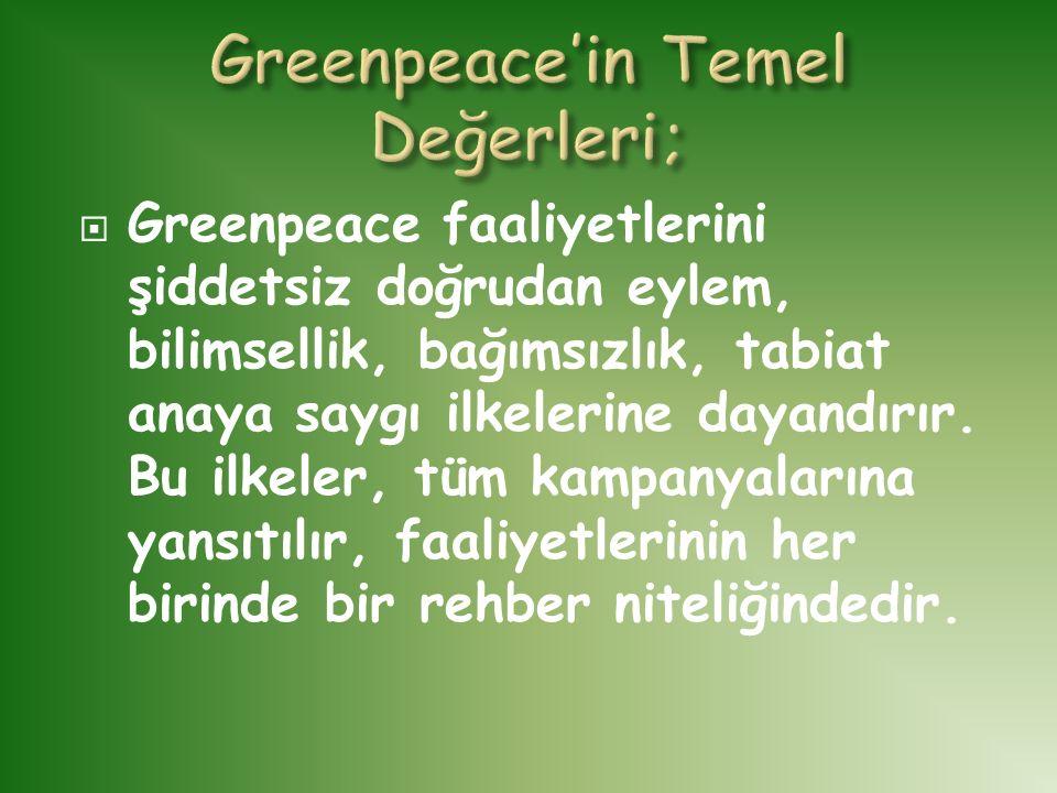 Greenpeace'in Temel Değerleri;