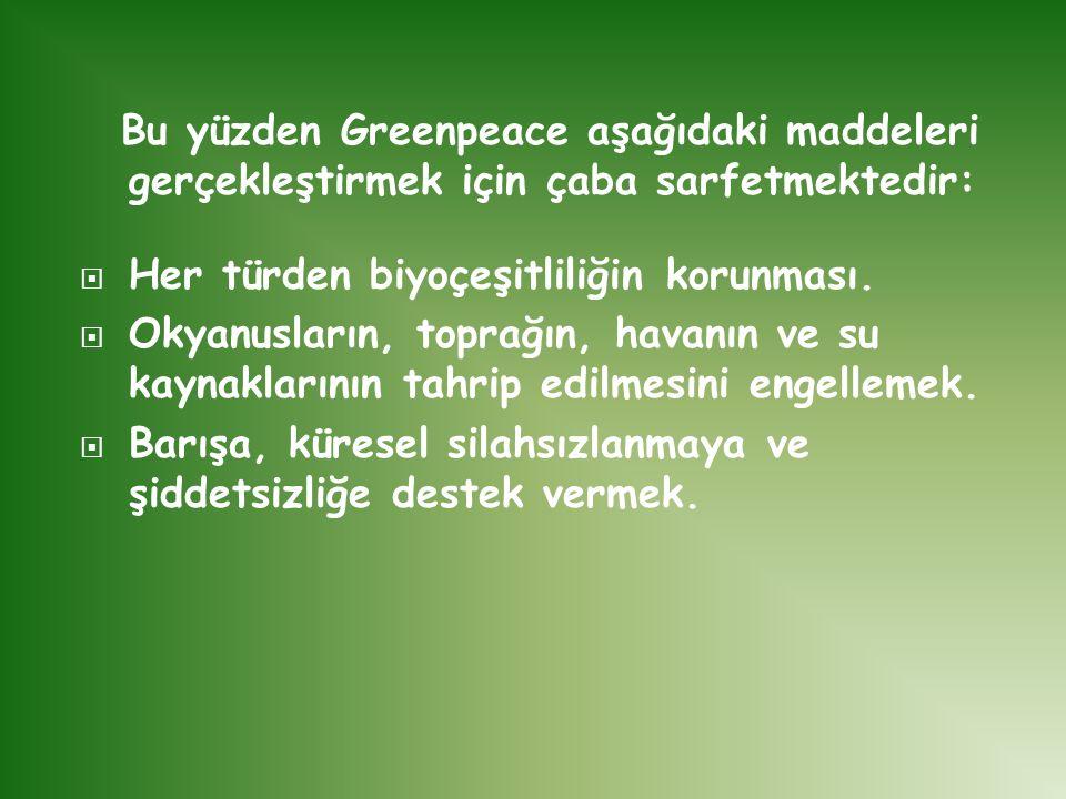Bu yüzden Greenpeace aşağıdaki maddeleri gerçekleştirmek için çaba sarfetmektedir: