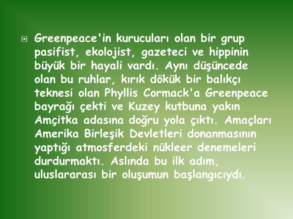 Greenpeace in kurucuları olan bir grup pasifist, ekolojist, gazeteci ve hippinin büyük bir hayali vardı.
